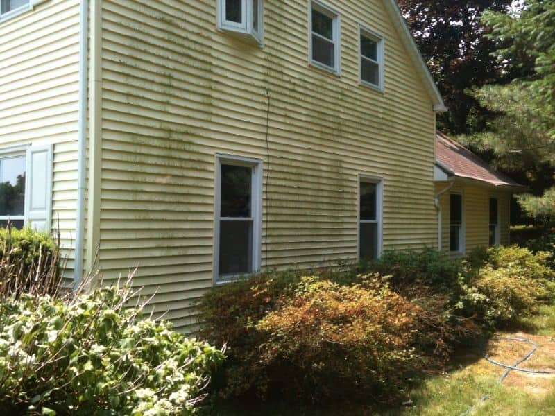 Mildew On Vinyl Siding Before Pressure Washing Complete
